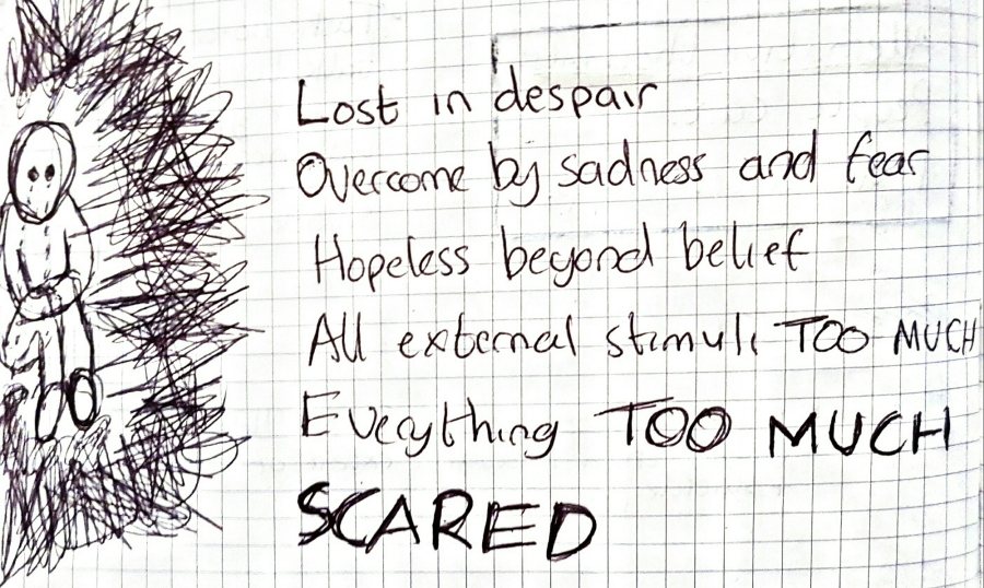 Lost in Despair (Visual Journal 17th December 2016)